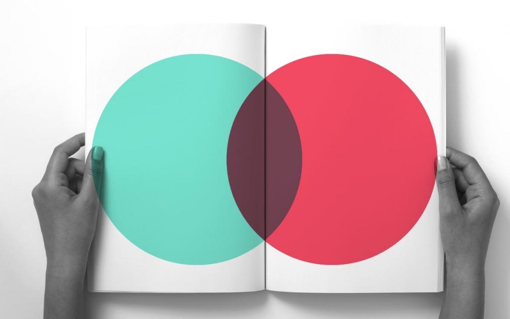 identidade da empresa - cores