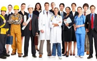 Conheça mais sobre o setor de Serviços