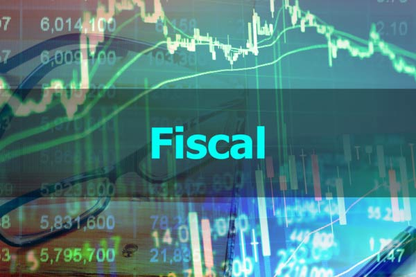 profissional da área fiscal
