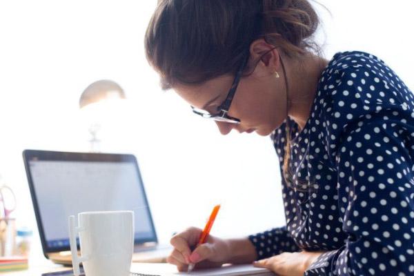 Como funciona o Empregador WEB?